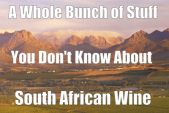 A Whole Bunch of Stuff You Don't Know About South African Wine