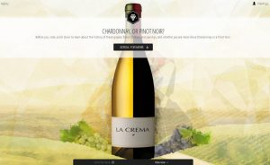 Virtual Vintner Chardonnay or Pinot Noir_300dpi