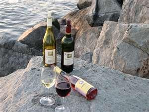 Wine Oh TV Pinot Paradise
