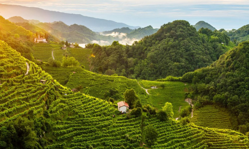 Conegliano Valdobbiadene the Birthplace of the Best Prosecco: a small zone in Veneto, between the magical mysteries of Venice and the magnificent Dolomites mountain range.