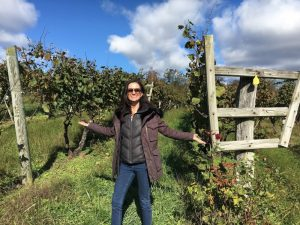 A Taste of Northern Virginia Wine Country