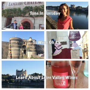 Loire Valley Wine Travel Monique Soltani Wine Oh TV